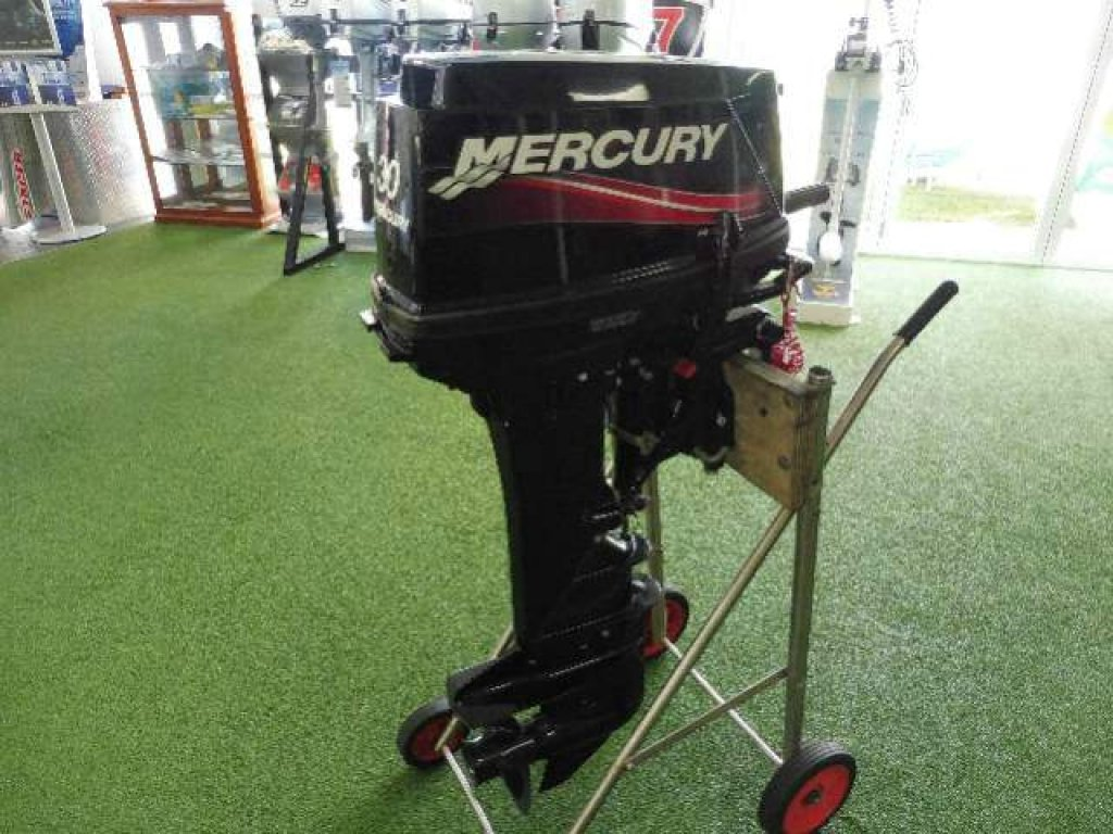 2010 Mercury 30HP 1030211fl