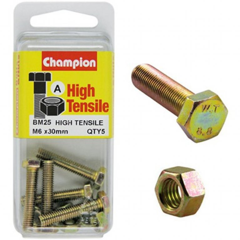 Champion High Tensile Bolts and Nuts - M6 X 30
